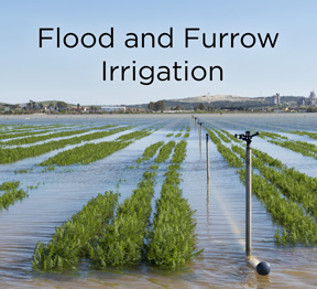 Outdated flood and furrow irrigation