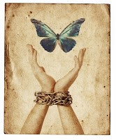 butterfly and hands