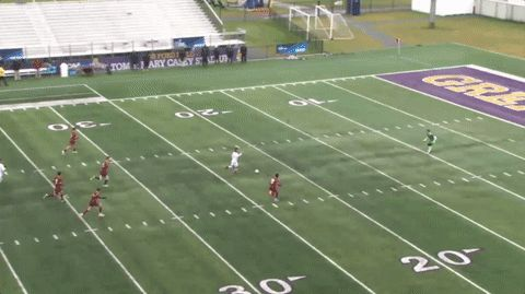ALbany second goal