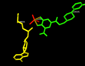 Swiss PDB view of active site of COMT inhibitor with SAM and Mg2+ cofactor, SAM = yellow, Mg2+ = red, substrates = green