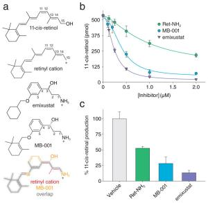 (a) Investigation of structure and (b, c) inhibitory effects of emixustat and MB-001