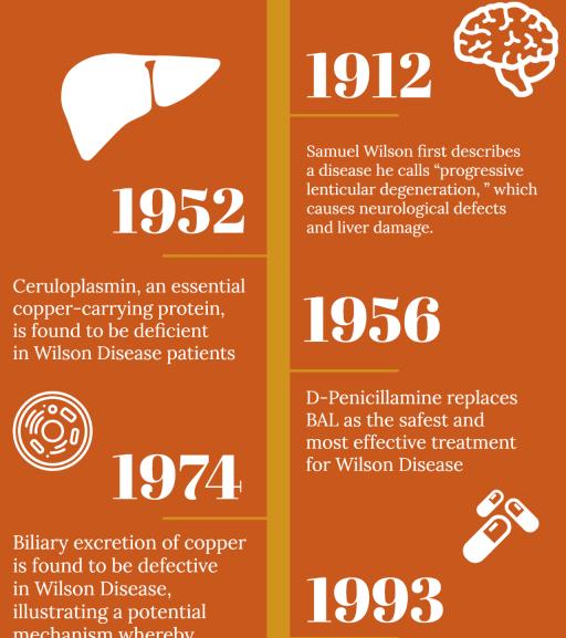 Wilson Disease: An Inborn Error of Copper Metabolism