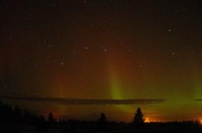 Aurora Nov 15 2014