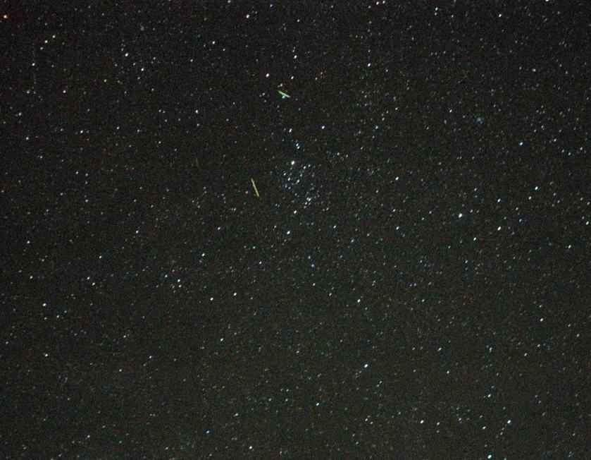 Short Green Meteor Trails in Perseus