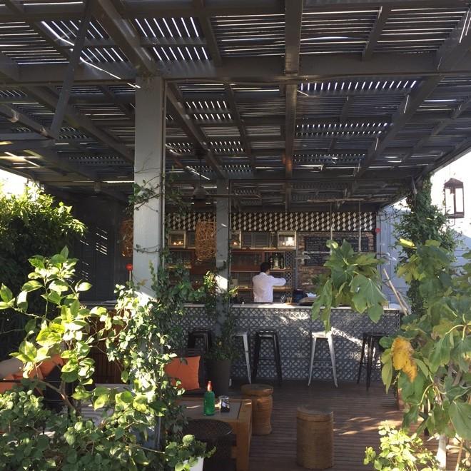 terraza pulitzer vermut
