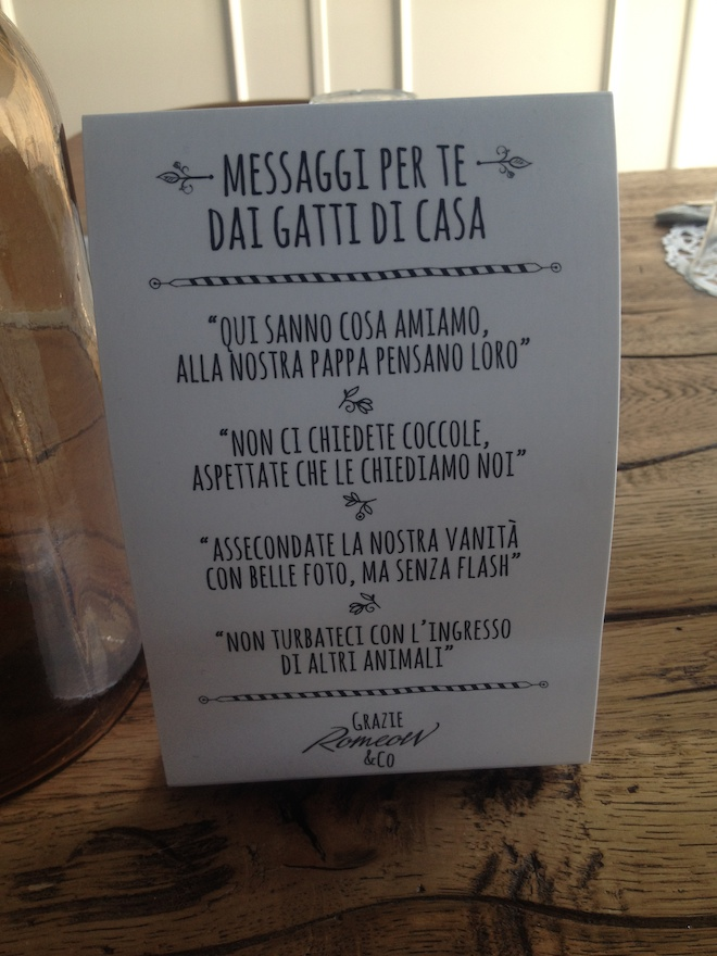 Romeow Cat Bistrot menu