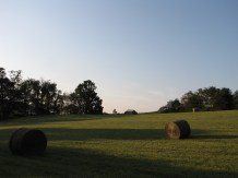 The old hay field.