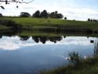 What a serene setting