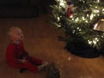 Watching TV by the Christmas tree