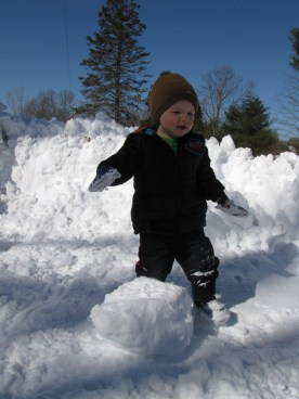 Checking out the snow balls