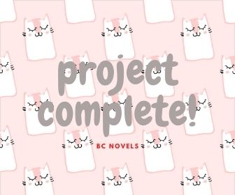 bc novels project complete