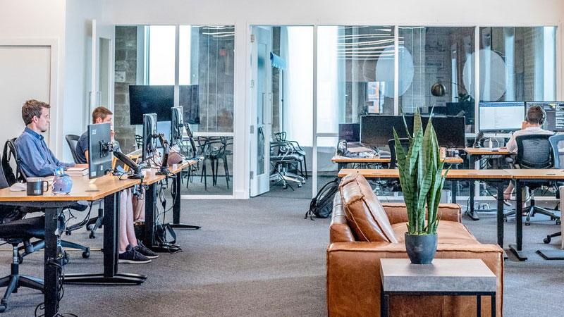 Menschen arbeiten in modernem, offenen und hellem Büroraum mit Pflanzen an ihren Schreibtischen