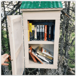 Free Little Library Svartfjellet