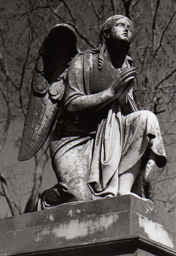 Maple Hill Cemetery Angel Statue photo by queenmari