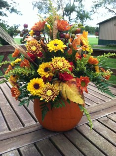 Kar-Fre Carved Pumpkin Floral Display