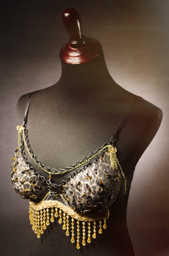 "Art Bra ""Proud Mary"""