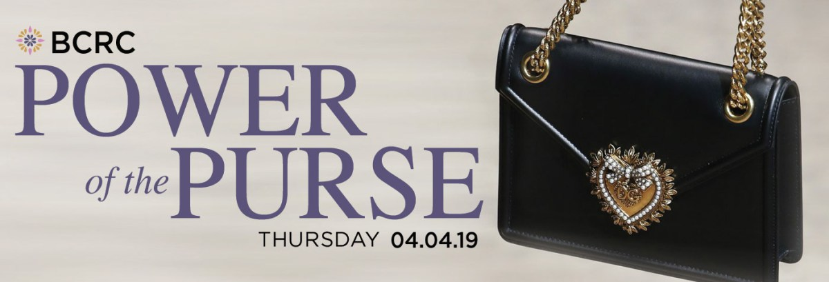 Power of the purse banner