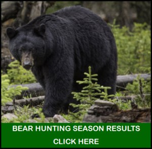 Bear Hunting Results