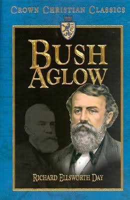 Bush Aglow (D L Moody)