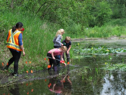 Finding the sites designated for planting