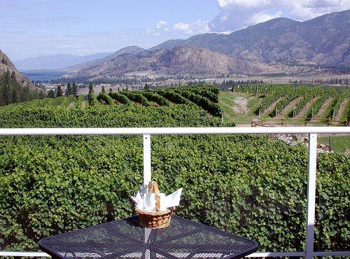 Hawthorne Mountain Vineyard