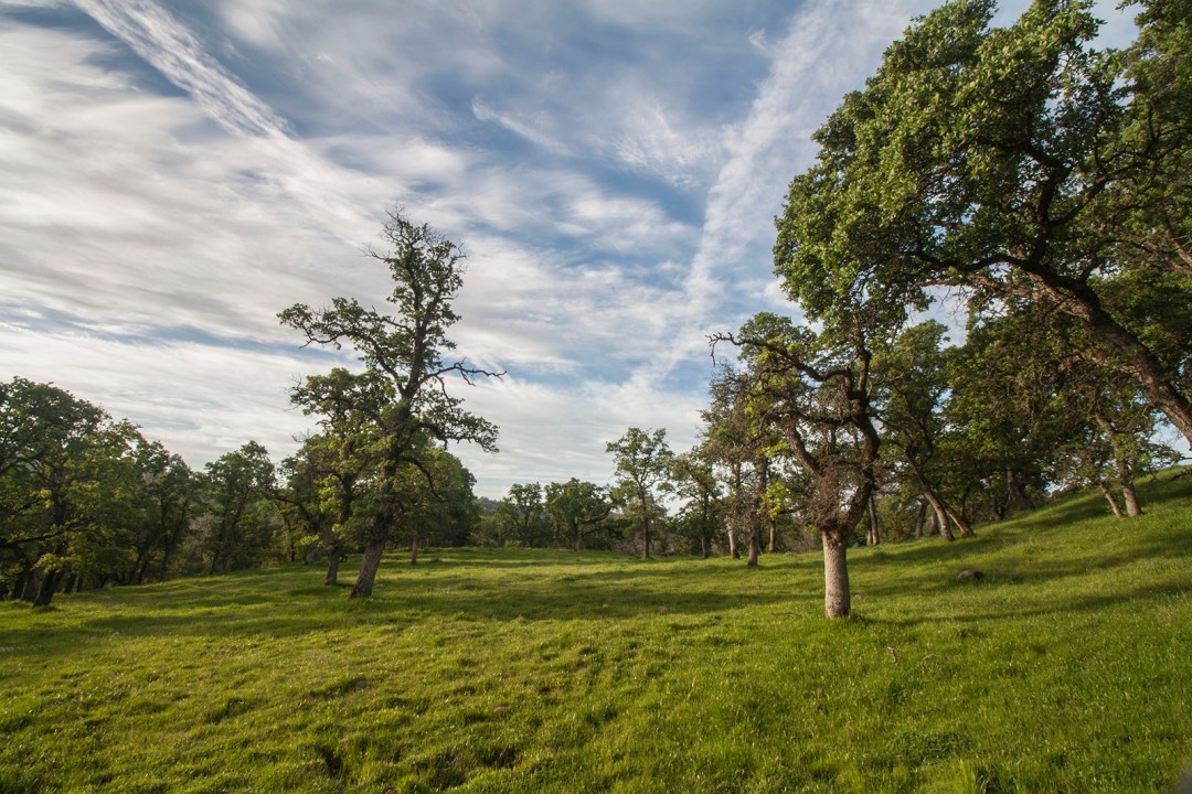 Ranch 4 - surrounded by over 700 acres of open space