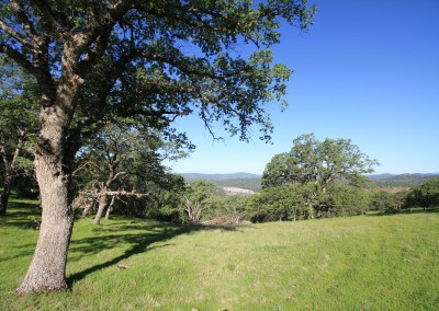 Fillmore Hill Ranch – generous pasturage, miles of trails and views that go on forever!