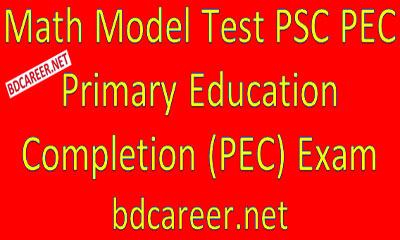 PSC PEC Math Model Test