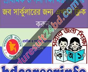 Primary Mass Education Job Circular 2018