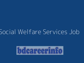 Social Welfare Services Job 2019