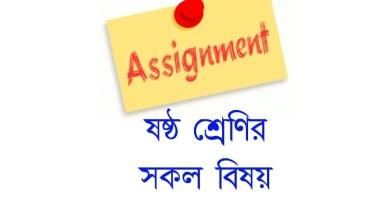 Assignment Class 6