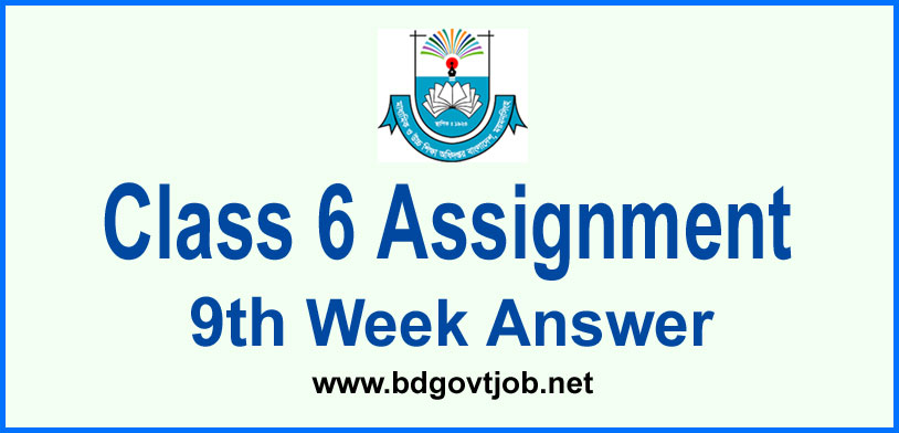 Class 6 Assignment 9th Week Answer