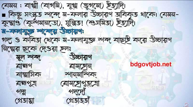 Bangla assignment class 11 2022 answer