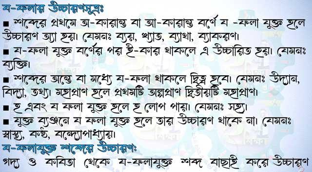 Bangla assignment class 11 question