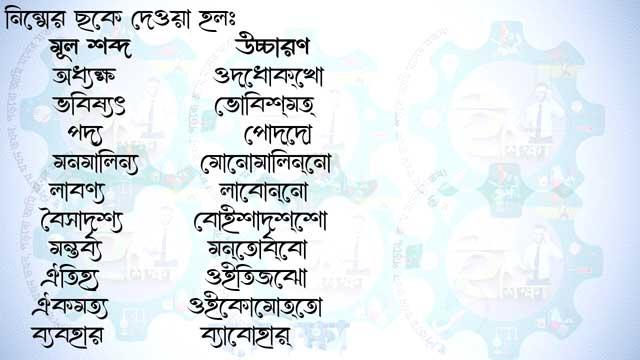 3rd week class 11 Assignment Bangla