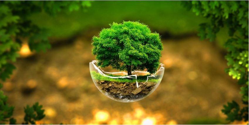 Bangladesh Environment Conservation Act 1995