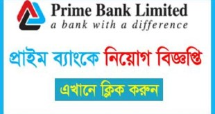 Prime Bank Limited Job circular Application
