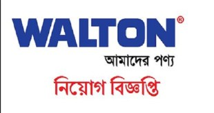walton group job circular 2019