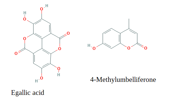 4-methylumbelliferone and egallic acid components of pecan shell tea