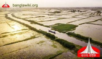 bangla-wiki-org-banner-beautifull-bangladesh