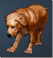 Brown Fighting Dog Front