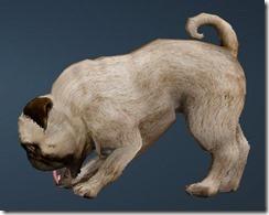 Calpheon Chubby Dog Side