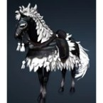 Cavaro Horse Gear