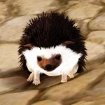 [Tier 1] Hedgehog