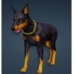 [Tier 1] Mediah Guard Dog