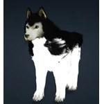 [Tier 1] Snow Wolf Dog