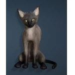 [Tier 1] Grey Thin Cat