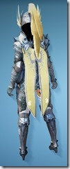 bdo-aker-guard-tamer-costume-3