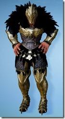 bdo-cavaro-berserker-costume