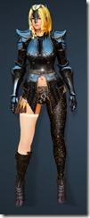 bdo-clead-ranger-costume